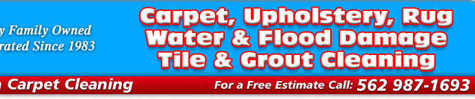 American Carpet Cleaning Service